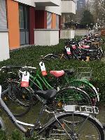 werbemittel-sunweb-fahrrad